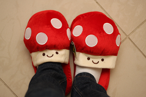 photo credit: Mushroom slippers via photopin (license)